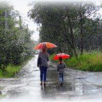 Дождь... :: emaslenova