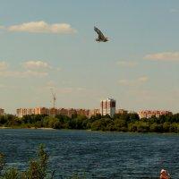 лето на реке 2 :: Александр Прокудин