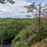 Финская Карелия. :: Тиша