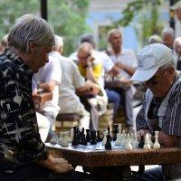 О шахматистах. :: Стас