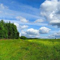 Небо и земля (4) :: Милешкин Владимир Алексеевич