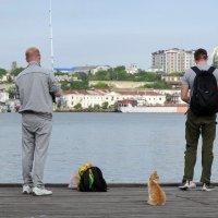 Рыбаки... :: emaslenova