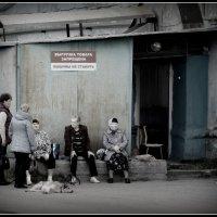 Чего сидим? :: emaslenova