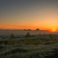 Летнее утро на Тамбовщине. :: Александр Тулупов