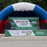 Профессиональный праздник. :: Андрей Синицын