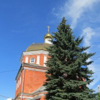 Русская церковь в Уфе и ель :: Вера Щукина