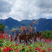 Удивительной красоты сады замка Трауттмансдорф...(Италия) :: Galina Dzubina