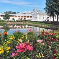 Берег летнего цветения :: Николай Белавин