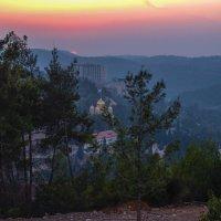 Закат над иерусалимским лесом :: Alla S.