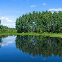 Озёрной отражаясь тишиной... :: Лесо-Вед (Баранов)