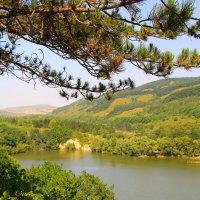 Райский уголок. Бекешевское озеро (северная часть) с высоты птичьего полёта :: Vladimir 070549