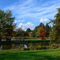 Ботанический сад. Гамбург :: Nina Yudicheva