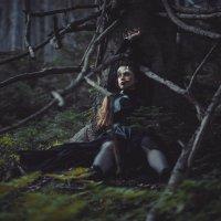тайный лес :: Алёна Николаева