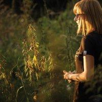 Лето близилось к закату :: Вера Сафонова
