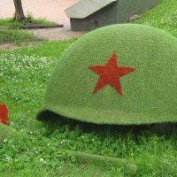 Военный  снимок :: Дмитрий Фадин