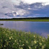 Речка Перя... :: Sergey Gordoff