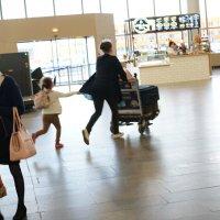 случай в аэропорту :: Svetlana Shalatonova