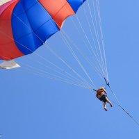 На парашюте :: Владимир Переклицкий