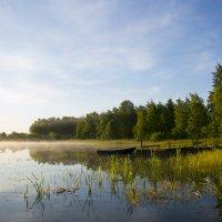 озеро Краснофлотское :: Nika Polskaya