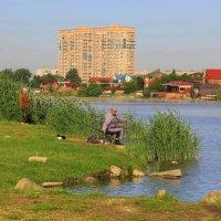 Краснодар :: Галина Новинская