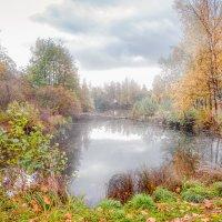 Скоро осень :: Виталий