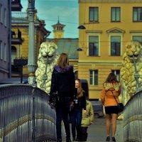 Дефиле на Львином мостике... :: Sergey Gordoff