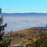 зимний туман :: Elena Wymann