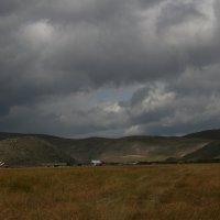 Байкал. Дельта реки Анга :: Дмитрий Солоненко