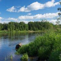Лето на Лозьве... :: Марат Шарипов