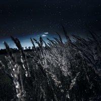 Ночь :: Оля Дудинова