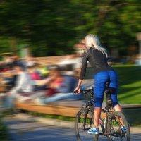 На велосипеде. :: Александр Бабаев