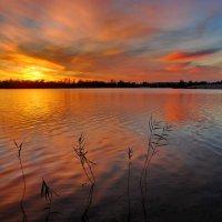 Закат на озере :: Валерий Толмачев