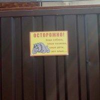 Апогей злости) :: Галина Бобкина