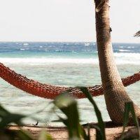 Мальдивский дневник :: Volha