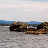 Камень черепаха на Байкале :: Марина Кириллова