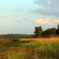 Августовский вечер на реке :: Ирина Румянцева
