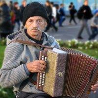 Мужичок с гармошкой. :: Александр Бабаев