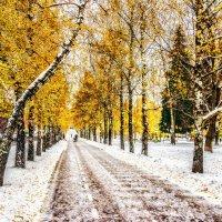 Осенняя зима. Сквер. :: Сергей Филатов