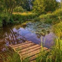 Мосток над тихою речушкой 2 :: Андрей Дворников