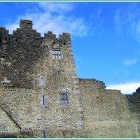 Замок Росс, Ирландия :: Марина Домосилецкая