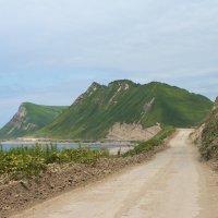 дорога вдоль моря, о.Сахалин :: Наталья Литвинчук
