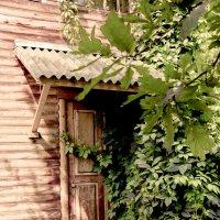 старая дверь старого дома :: Евгений Вяткин