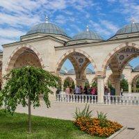 Мечеть Сердце Чечни :: Elena Ignatova
