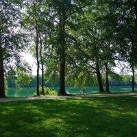 Август...На озере... :: Galina Dzubina