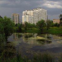 Еще лето, но уже не красное :: Андрей Лукьянов