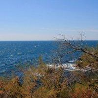 Просто море... :: Юля Грек