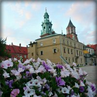 цветы во дворе замка :: Galina Belugina
