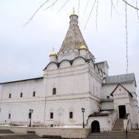 Введенский Владычный женский монастырь города Серпухова. :: tatiana