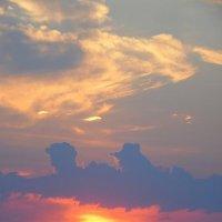Краски одного заката. :: nadyasilyuk Вознюк