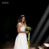В лучах очарованного света! :: Оксана Романова